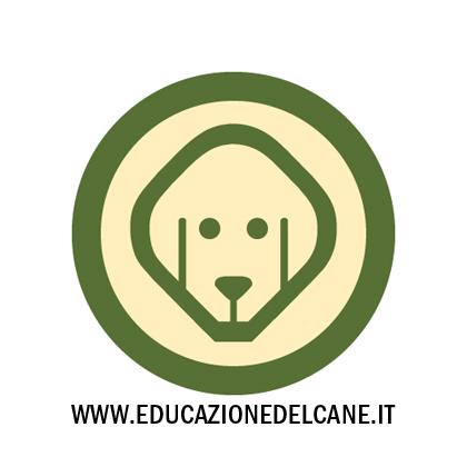 dogb_blog.jpg